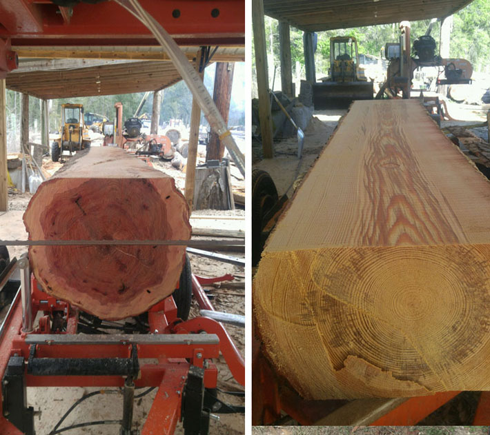 Live Edge Sawmill North Florida